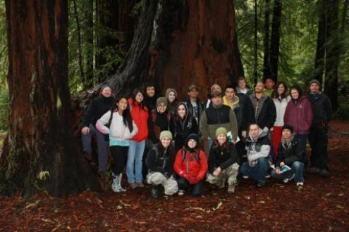 students in the redwoods
