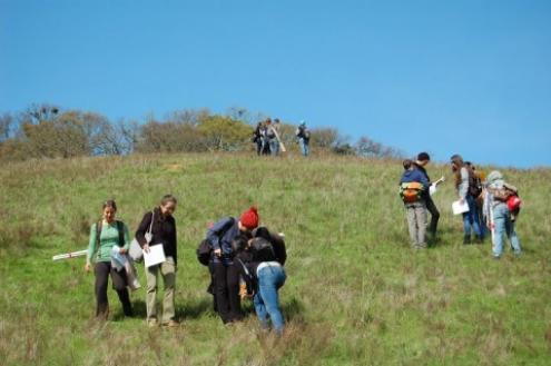 students surveying plants at Briones