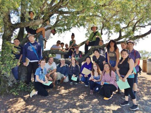 group shot under a live oak