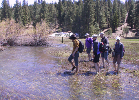 spring runoff on meadow