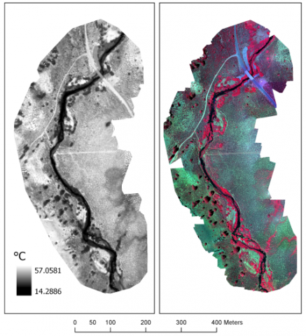 maps of thermal and multispectral imagery
